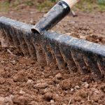 Bodenvorbereitung Rollrasen, Rollrasen verlegen